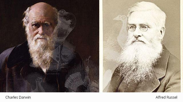 Darwin_Alfred
